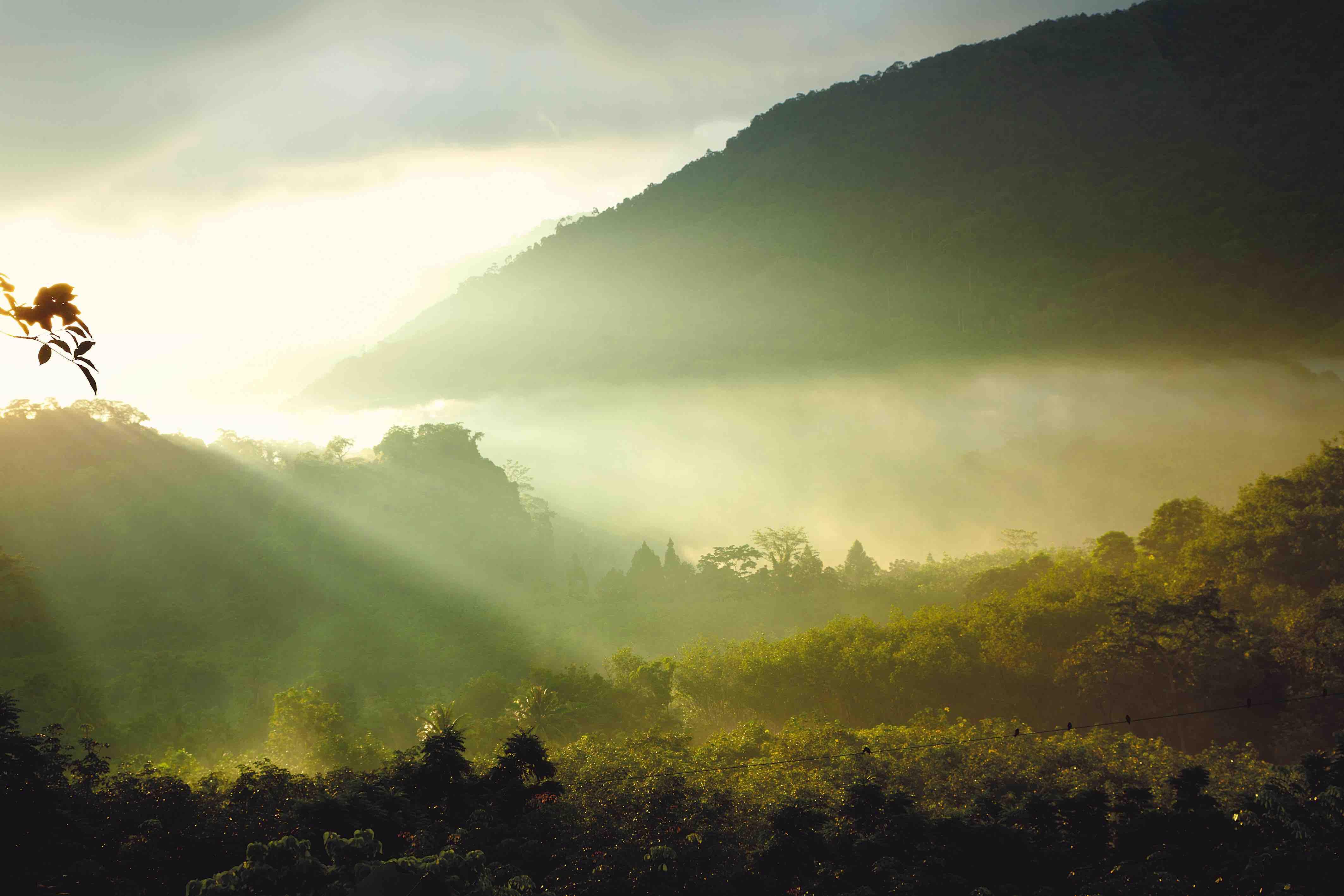BAJA-Link-a-Naturaleza-del-qué-hacer