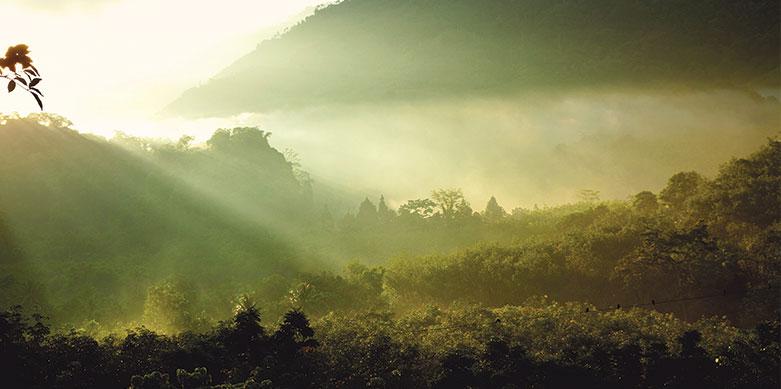 Nakhon-Si-Thammarat imagen post