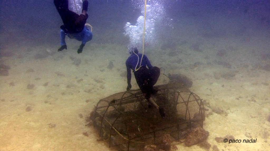 Foto 05 - Jaulas submarinas