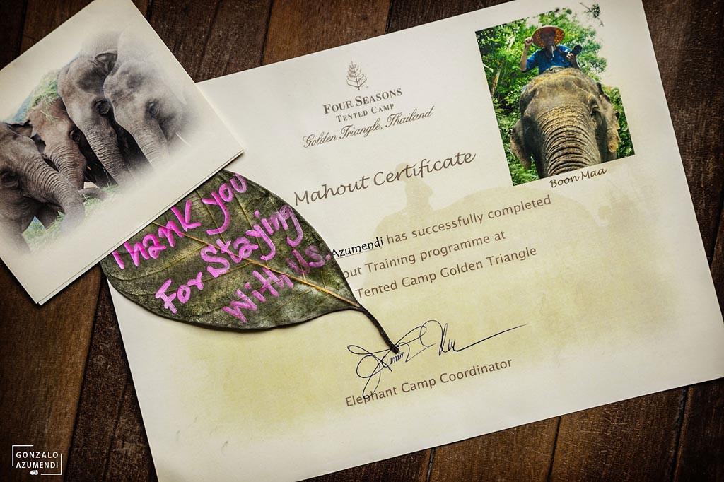 El Blog de Tailandia-Diploma Mahout