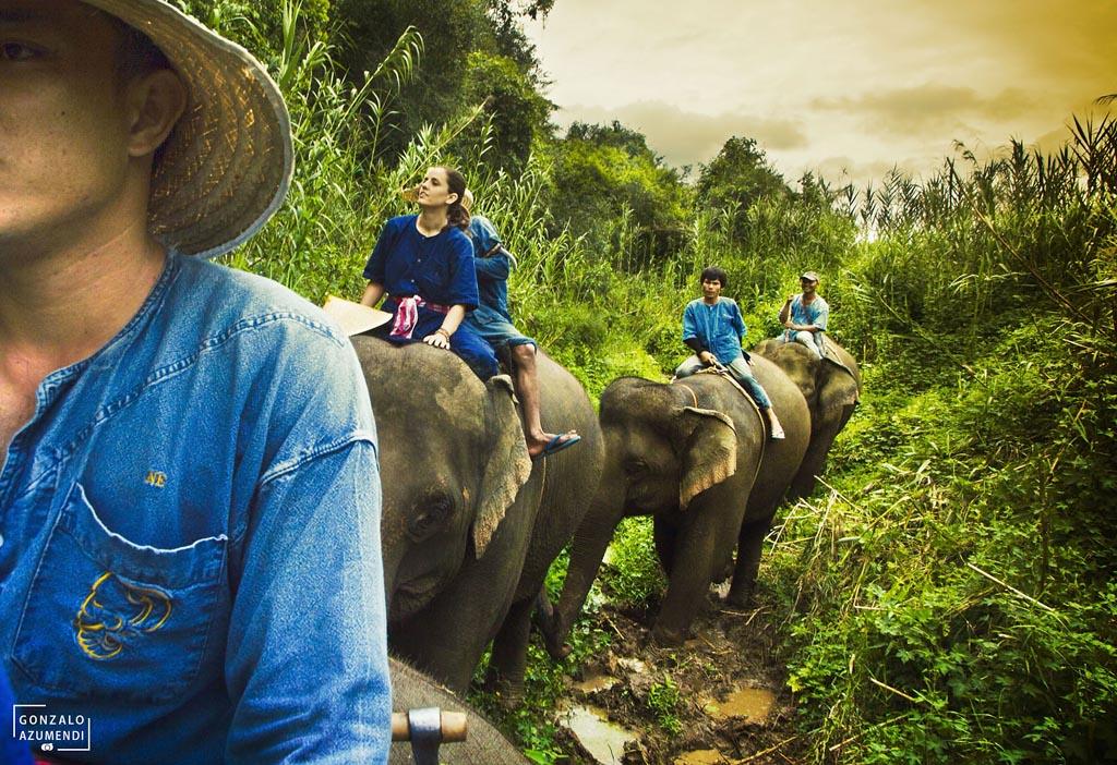 El Blog de Tailandia- Paseo en elefante