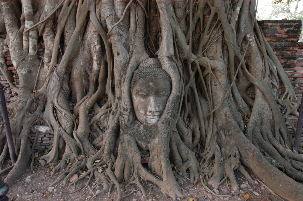 Foto: Turismo de Tailandia/ Wat Mahathat