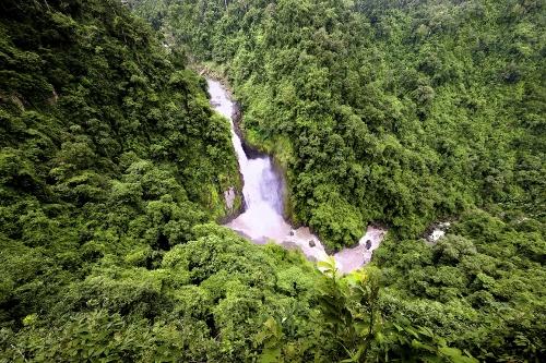 Foto: Turismo de Tailandia Parque Nacional de Kao Yai