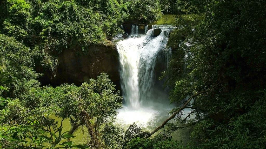 Parque de Kao Yai.Foto: Turismo de Tailandia