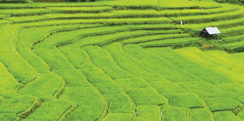 Descubriendo el norte de Tailandia, Mae Hong Son