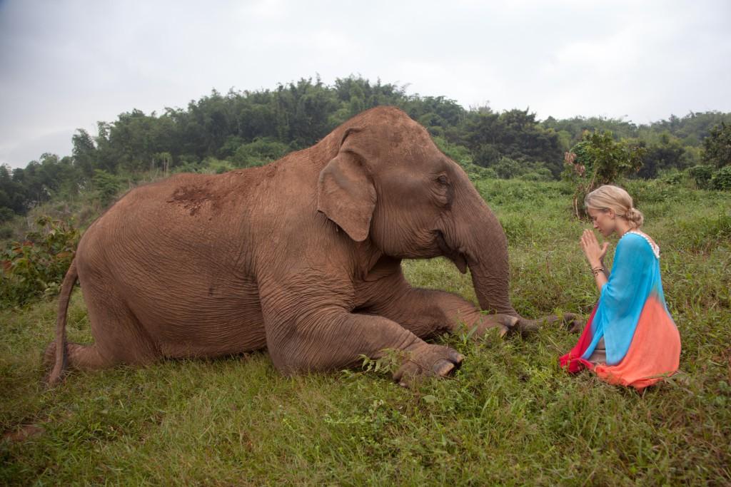 El Blog de Tailandia- María con elefante
