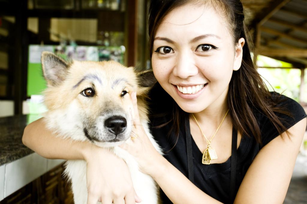 Perro thai con …cejas