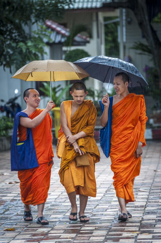 El Blog de Tailandia-Monjes bajo la lluvia