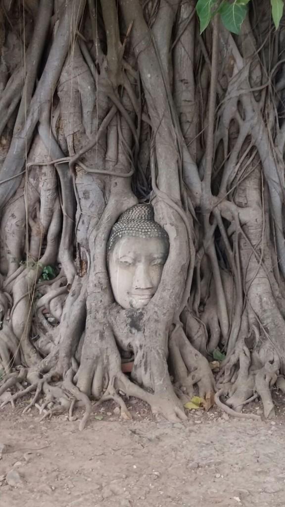 el-blog-de-tailandia-ayutthaya-03
