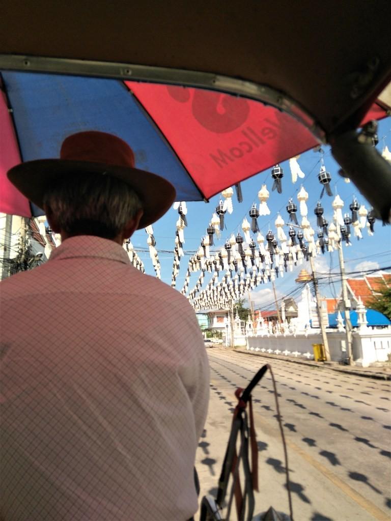 Coche tirado por caballos en Lampang -paraíso-