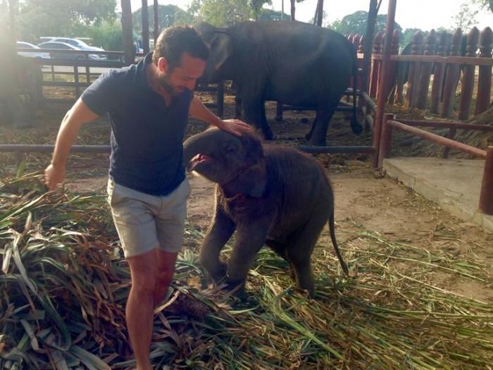 Foto 23_Elefante Ayutthaya_