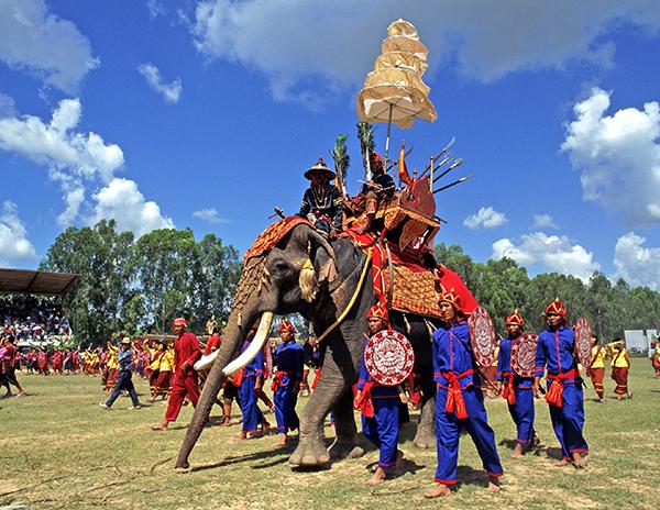 Surin Elephant Round