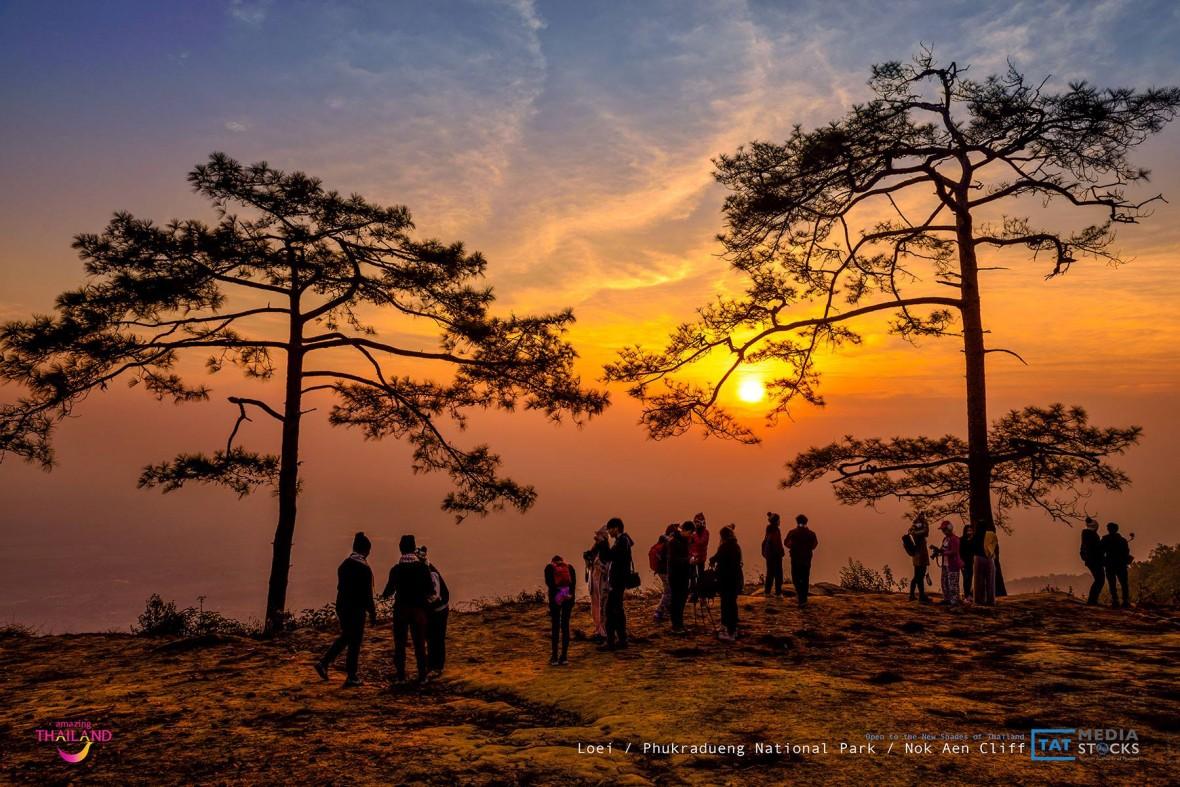 Blog de Turismo de Tailandia - Loei, Phukradueng National Park