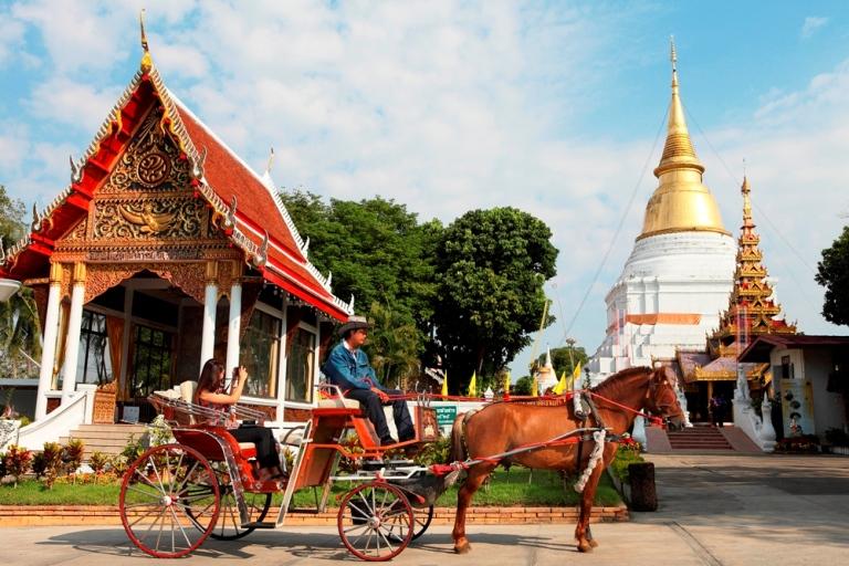 Turismo de Tailandia_ Lampang Caballos