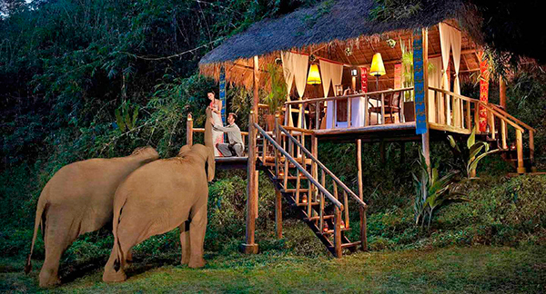 Anantara Golden Triangle Elephant Camp & Resort Chiang Rai
