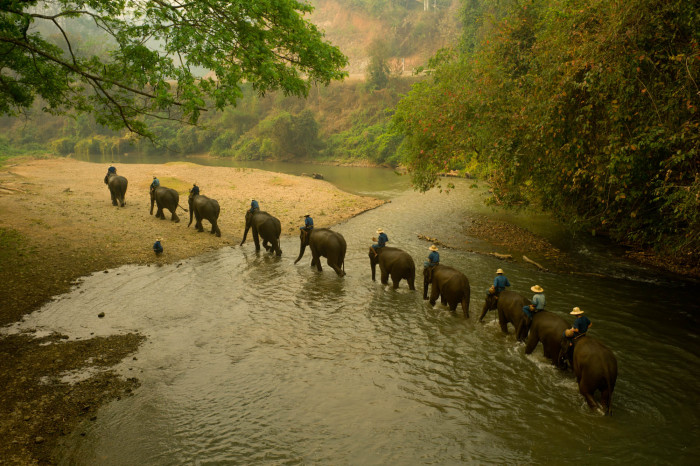 Turismo de Tailandia_07_L1001127