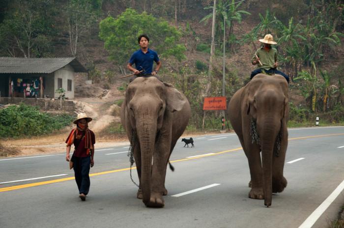 Turismo de Tailandia_ 09_VAM8849
