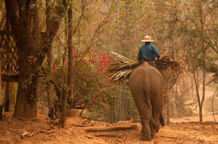 Turismo de Tailandia_ 10_VAM8930