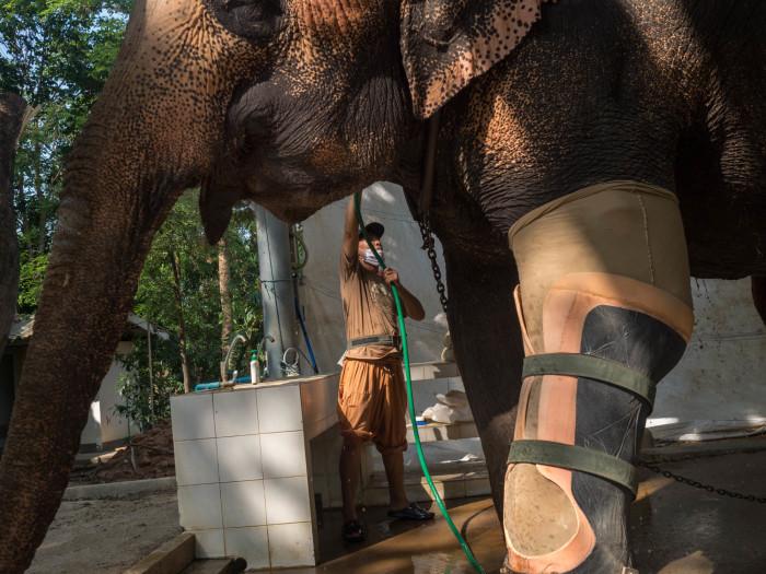 Turismo de Tailandia_11_CIR0351
