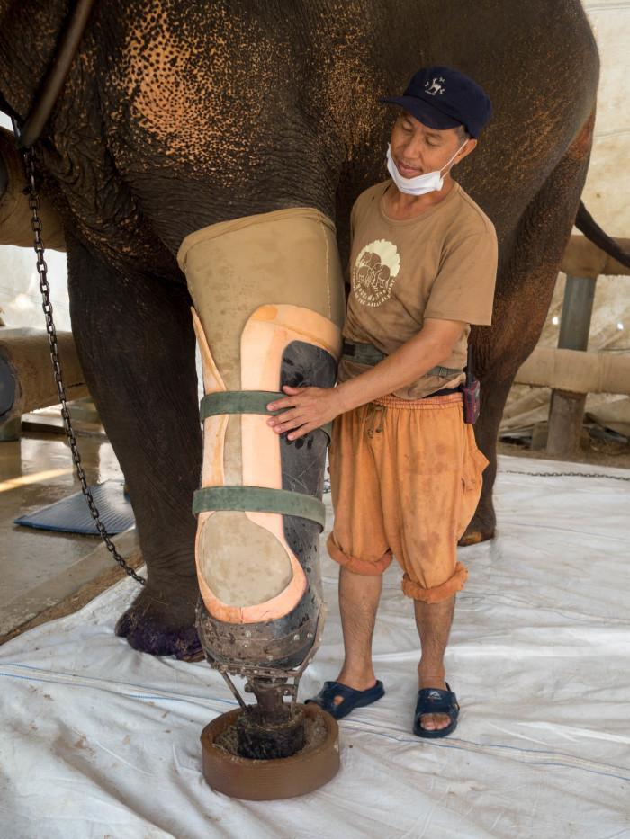 Turismo de Tailandia_ 12_CIR0393