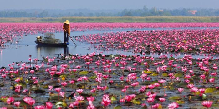 Turismo de Tailandia_Udon-Thani-00012981 PARA CERRAR