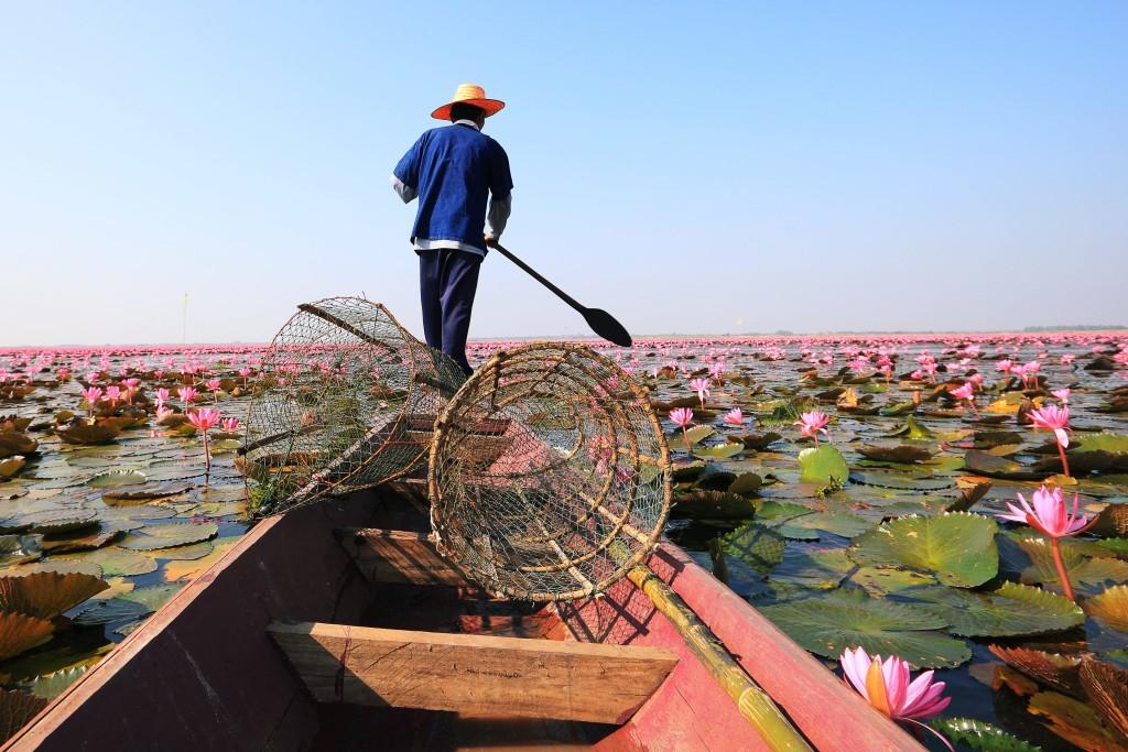 Turismo de Tailandia_Udon-Thani-00016157