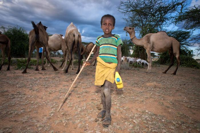Kenia – Niños pastores