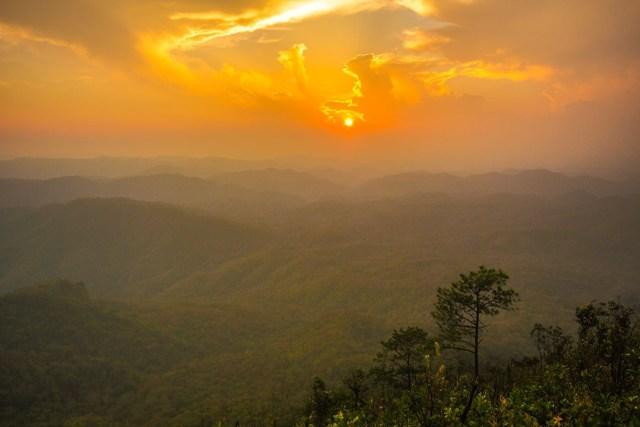 Doi-Chong-National-Park-DNP