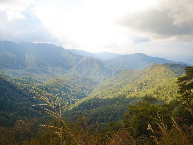 Mae-Takhrai-National-Park-DNP