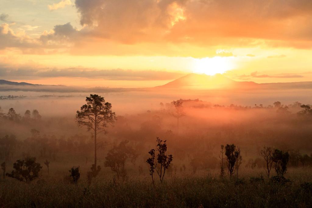 Phetchabun Thung Salaeng Luang National Park